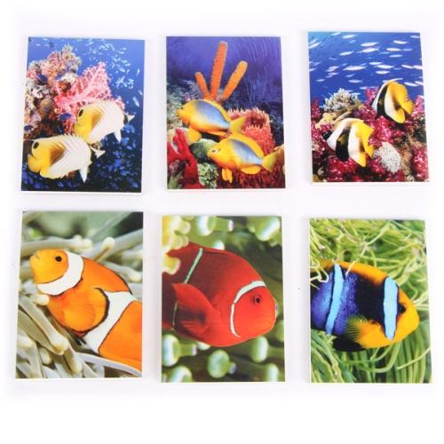 fotos de peces2