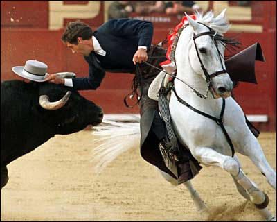 caballo rejoneo
