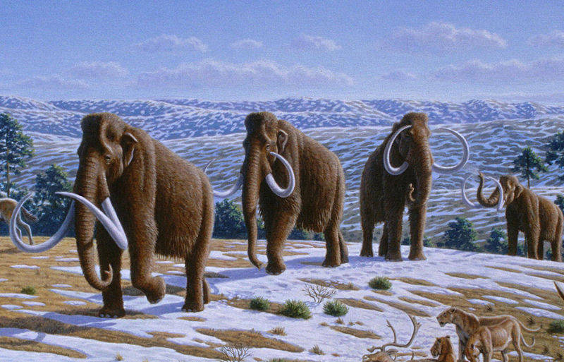 mammuthus-on-ice-age