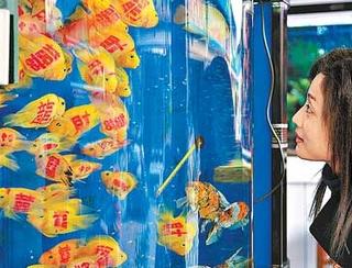 peces-tatuados