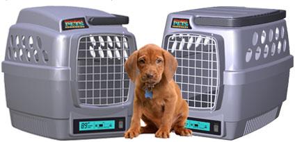 transpote climatizado para mascotas